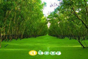 TOUR CHÂU ĐỐC- HÀ TIÊN 3N3Đ